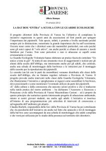 80005 Pour Moi FUGA Costume Da Bagno-Nero
