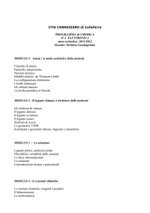 PROGRAMMA - ITIS Cannizzaro Colleferro