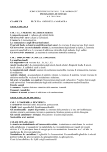 scienze - Liceo Morgagni