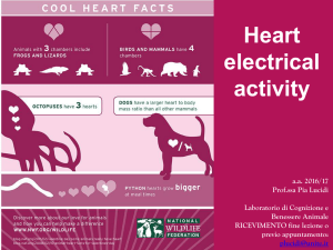 1-heart electrical activity - Progetto e
