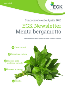 EGK Newsletter Menta bergamotto