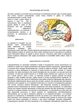 handbook autism pervasive developmental disorders