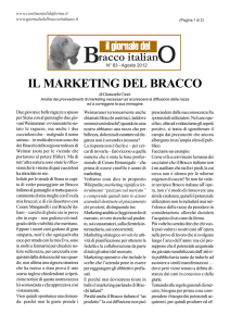 il marketing del bracco - giornale del bracco italiano