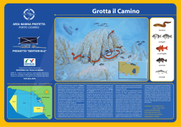 Grotta il Camino - Orca diving center