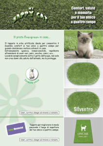 HAPPY CAT-scheda.indd - Evergreentown Italia srl