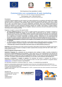 Commerciale con competenze di web marketing