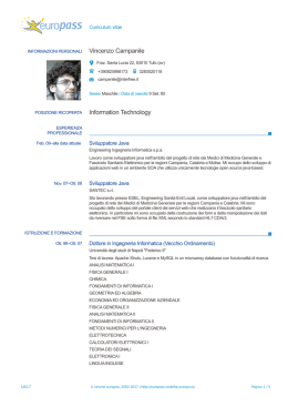 Vincenzo Campanile Information Technology