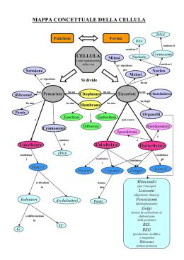 pdf Принципиальные