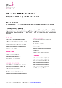 master in web development