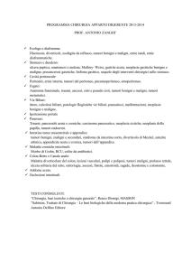 Seidensticker STAFFA libero Bianco 1//1-arm 46 KW NUOVO-TF