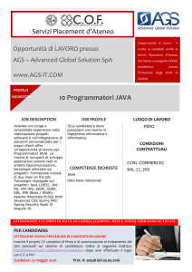 Servizi Placement d`Ateneo 10 Programmatori JAVA