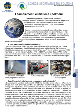 schede informative sul polmone - Health and Environment Alliance