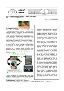 new-Micro-West-Nile-Virus - Laboratorio Virologia Cosenza