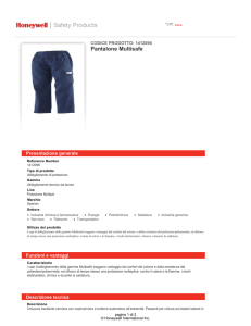 Pantalone Multisafe - Honeywell Safety Products