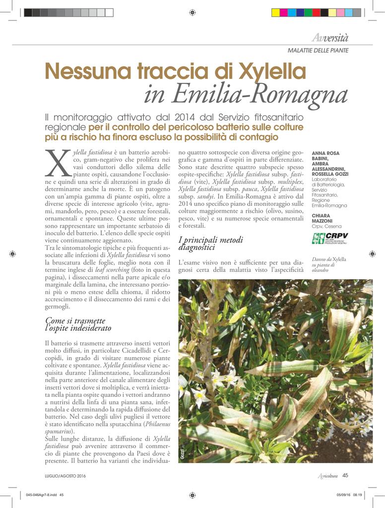 Avversità Delle Piante Coltivate nessuna traccia di xylella in emilia-romagna