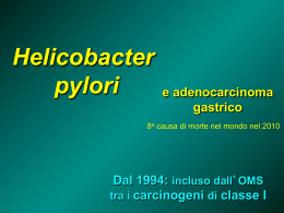 Helicobacter File