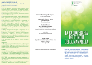 Brochure in lingua italiana (IT-PDF)