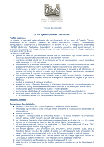 n. 1 IT System Specialist Team Leader Profilo posizione