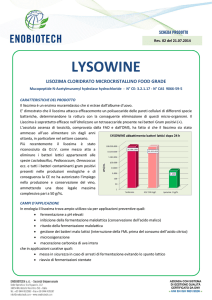 lysowine - Enobiotech