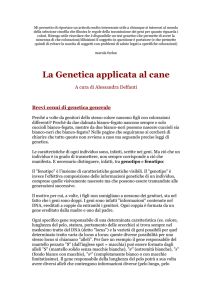 La Genetica applicata al cane