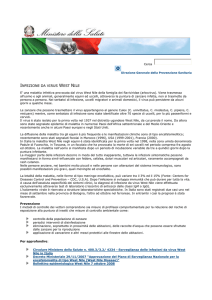 infezione da virus west nile