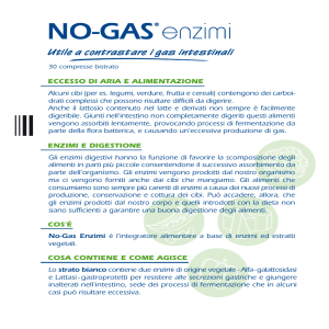 No-Gas ® Enzimi