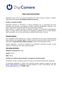 Stage –Junior Java Developer DigiCamere Scarl, cerca un/a