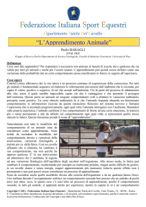 Apprendimento Animale