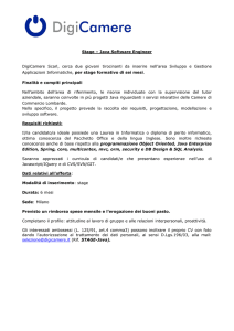 Stage – Java Software Engineer DigiCamere Scarl, cerca due