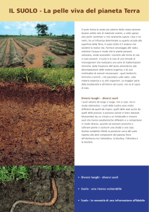 IL SUOLO - The International Union of Soil Sciences