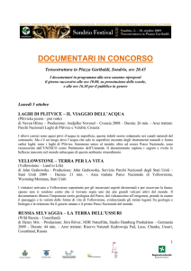 documentari in concorso