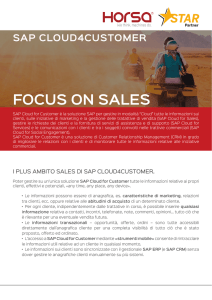 focus on sales