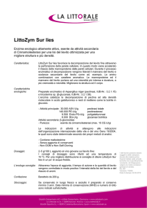 LittoZym Sur lies