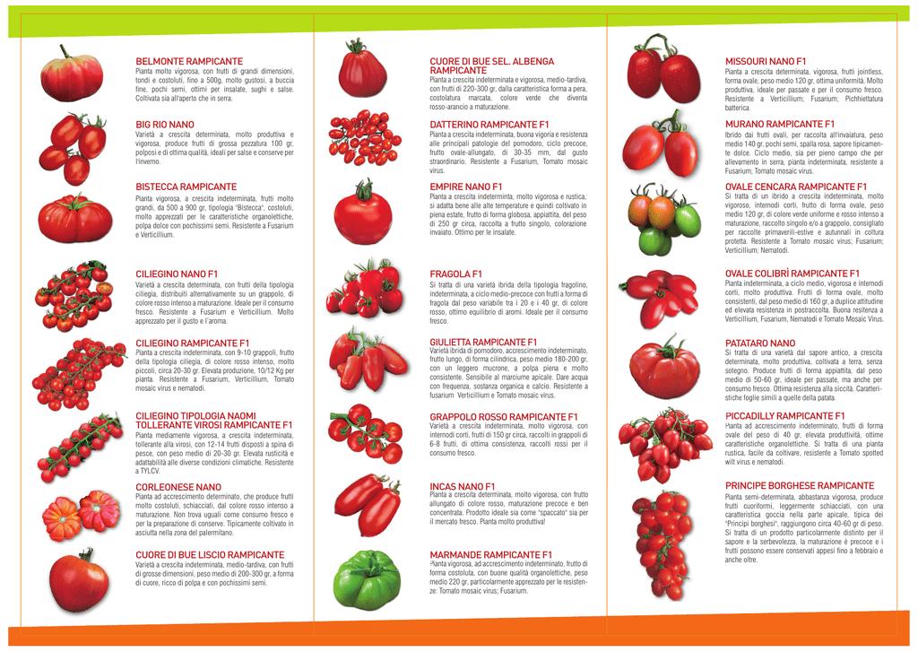 Elenco delle ricette Grandi classici con lingrediente principale Riso vialone nano.