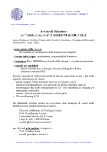 2 Post Doc Positions