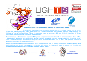 Progetto europeo LIGHTS