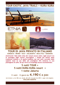 tour di java privato in italiano