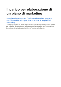 Incarico per elaborazione di un piano di marketing