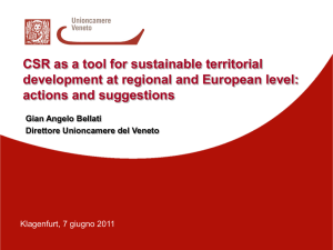 CSR as a tool for sustainable territorial - ENSA