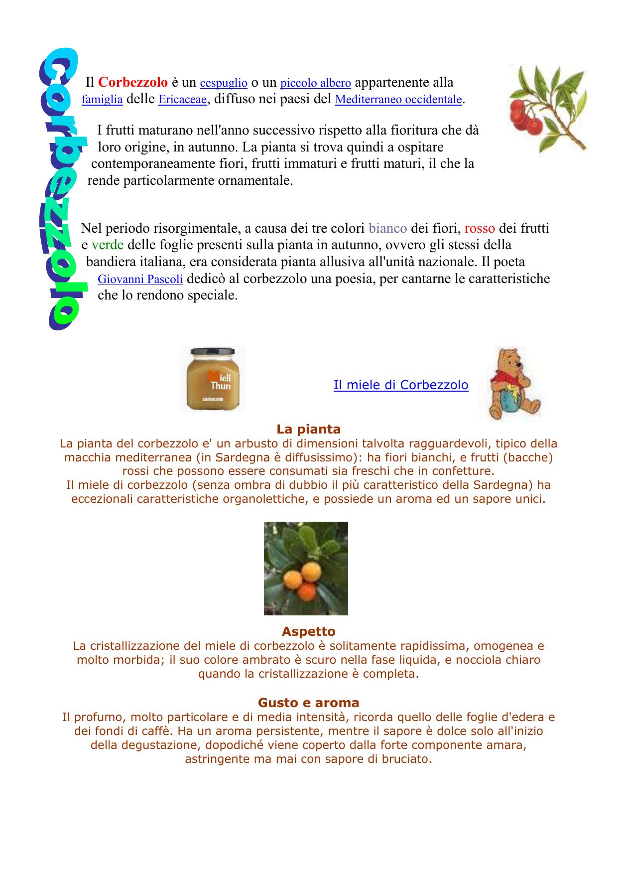 Fiori Bianchi Macchia Mediterranea.Corbezzolo Wordpress Com