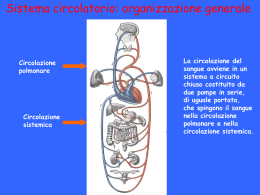 3. Apparato cardiocircolatorio