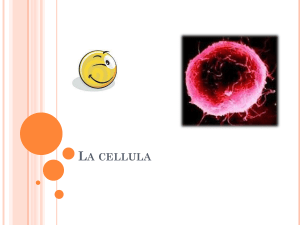 La cellula - Share Dschola