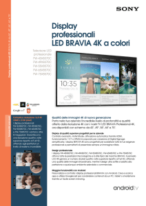 Display professionali LED BRAVIA 4K a colori