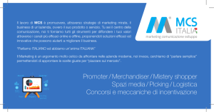 Promoter / Merchandiser / Mistery shopper Spazi media