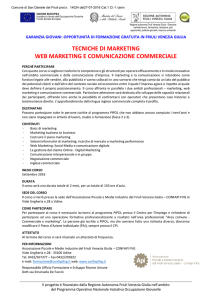 tecniche di marketing web marketing e comunicazione - MoVI-FVG