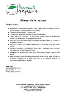 public/platforms/31/cke_contents/2465/Simmetrie in natura