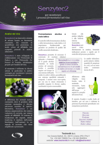 Nota applicativa vino - Tectronik Srl website