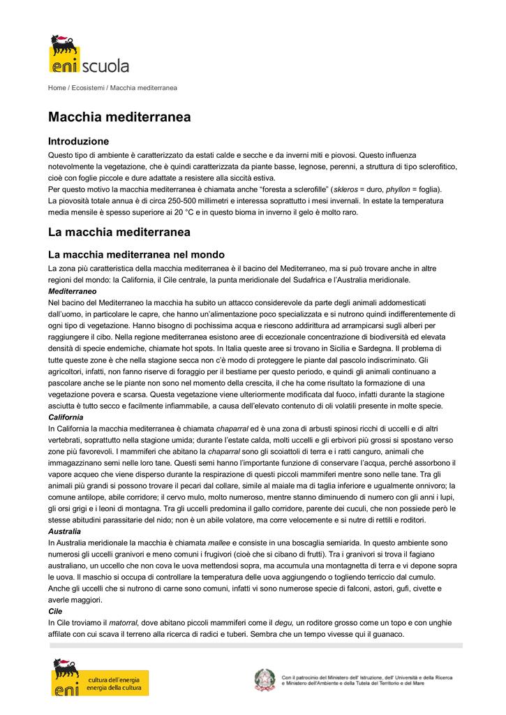 dieta de la zona mediterranea pdf