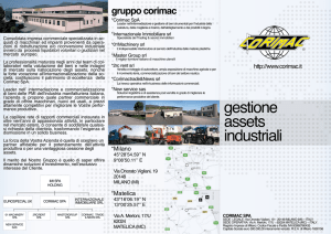 gestione assets industriali
