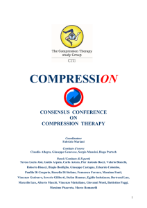 Consensus conference on Compression Therapy